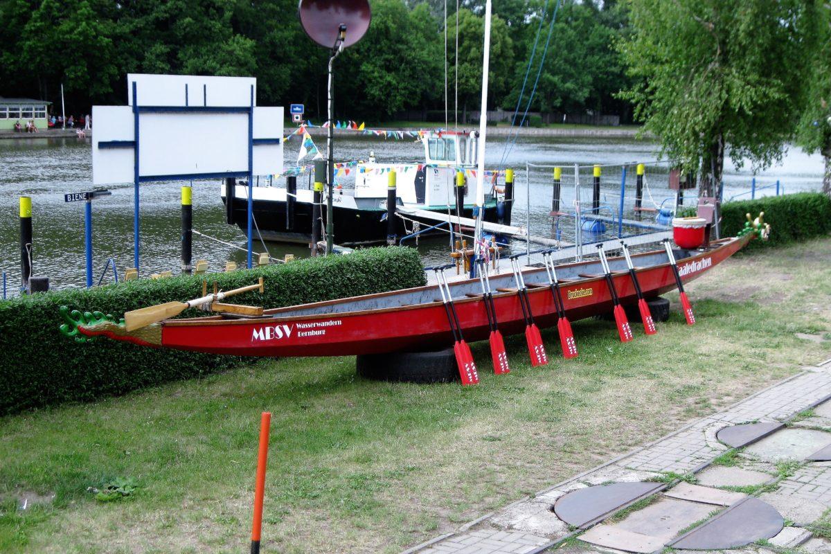 Drachenbootsport